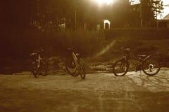 Bicicletta tre sulla sponda del fiume fotografia stock libera da diritti