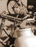 Bicicletta utilizzata dal lattaio nel recipiente di alluminio Fotografie Stock Libere da Diritti