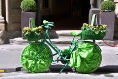 Bicicletta verde Stock Photos