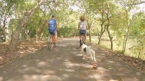 Biciclette d'annata dei pantaloni a vita bassa di giro felice giovane delle coppie nel parco con il cane che corre vicino Cicland stock footage