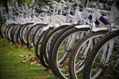 Biciclette di riga Immagine Stock