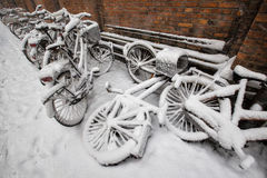 Biciclette in neve Fotografie Stock Libere da Diritti
