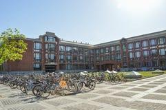 Biciclette parcheggiate all'università di Tsinghua Fotografia Stock Libera da Diritti