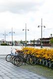 Biciclette parcheggiate sulla via di Lappeenranta Immagini Stock