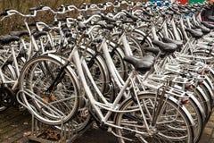 Biciclette per affitto Fotografia Stock Libera da Diritti