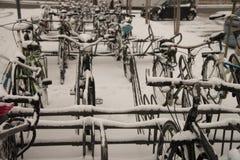 Biciclette sugli scaffali della bici con neve fotografia stock libera da diritti