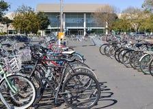 Biciclette a Uc Davis Immagini Stock