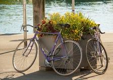 Biciclette vicino al flowerband Fotografie Stock