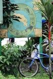 Bicikle ao lado do mapa dos animais selvagens de Costa Rica Imagens de Stock