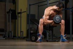 Bicipite adatto di Doing Exercise For dell'atleta immagini stock libere da diritti