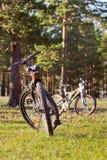 Bicis de montaña parqueadas en un bosque Foto de archivo libre de regalías