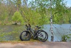 Bicis en orilla del lago Foto de archivo