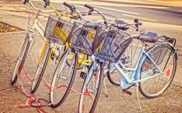 Bicis parqueadas en el pavimento Fotografía de archivo libre de regalías