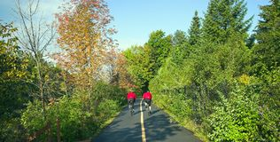 biclycling άτομα Στοκ εικόνα με δικαίωμα ελεύθερης χρήσης