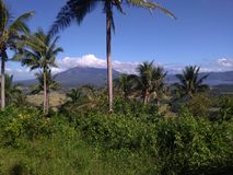 Bicol. View from the hilltop Stock Images