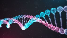 BiColor DNA chain Loop stock footage