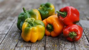 Yellow, orange, red and green sweet peppers Royalty Free Stock Images