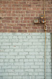 bicolred mur Obraz Royalty Free