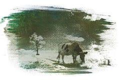 Bicromato de la goma de Unsuccesful Fotos de archivo