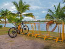 bicycle парк Стоковые Фото