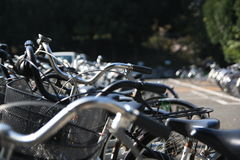 Bicycle. Group of Bicycles placed in Japanese Campus stock images