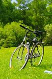 Bicycle. At sunny green park stock image