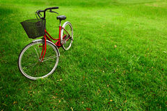 Bicycle. Red bicycle on green grass royalty free stock image