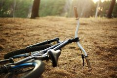 Bicycle. Lying on the ground Stock Images