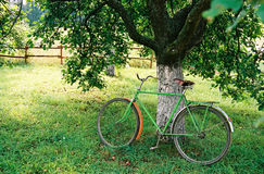 Bicycle. Under an apple-tree stock photos