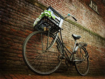 Bicycle against brick wall. Old bicycle against brick wall in a beautiful alley of Amsterdam Royalty Free Stock Photos