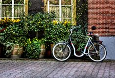 Bicycle from Holland Royalty Free Stock Photos