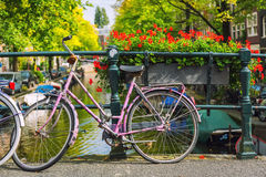 Bicycle in Amsterdam Royalty Free Stock Image