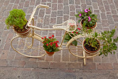 Bicycle as a flower stand Stock Photography