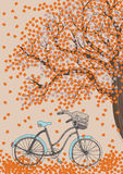 Bicycle and Autumn Tree Royalty Free Stock Photography