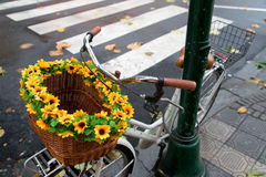 Bicycle with basket. Closed with theft Royalty Free Stock Photos