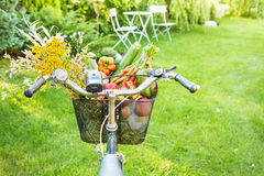 Bicycle basket filled with fresh vegetables and flowers Stock Image
