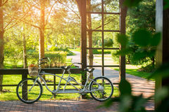 Bicycle with basket of fruits. Royalty Free Stock Image
