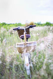 Bicycle with basket and guitar of flowers Royalty Free Stock Images