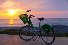Bicycle on Batumi beach Stock Images
