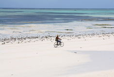 Bicycle on beautiful beach Royalty Free Stock Images