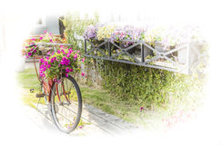 Bicycle. The bike basket with flowers with blurred effect Stock Photo