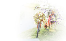 Bicycle. The bike basket with flowers with blurred effect Royalty Free Stock Images