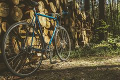 Bicycle, Bike, Brakes, Classic Stock Photography
