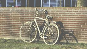 Bicycle, Bike, Brickwall royalty free stock image