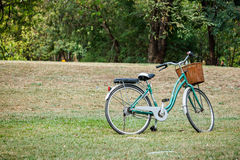 Bicycle or bike in the park Stock Photography