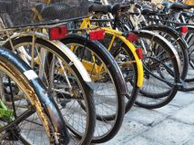 Bicycle bikes parking Royalty Free Stock Images