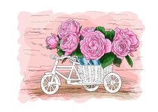 Bicycle with a bouquet of pink roses stock illustration