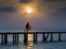Bicycle on bridge at sunset. Silhouette of a man riding his bicycle on a bridge at sunset Royalty Free Stock Photos