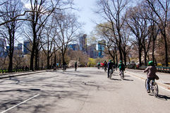 Bicycle in Central Park, New York. Cycling along the road lined with leafless trees is an activity that can be done in Central Park in the heart of New York City stock photos