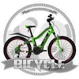 Bicycle of a certain type, on symbolic background. royalty free illustration